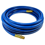 Thermoplastic Hose with Fittings